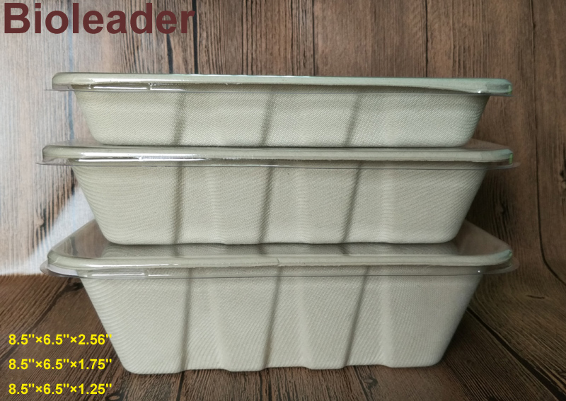 Bagasse Tray with PET Lid